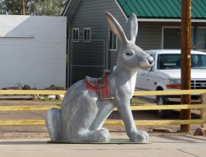 Take a ride of the giant rabbit